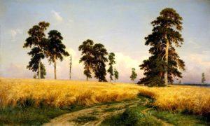 """""""Рожь"""", 1878;"""