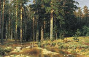 """""""Корабельная роща"""", 1887"""